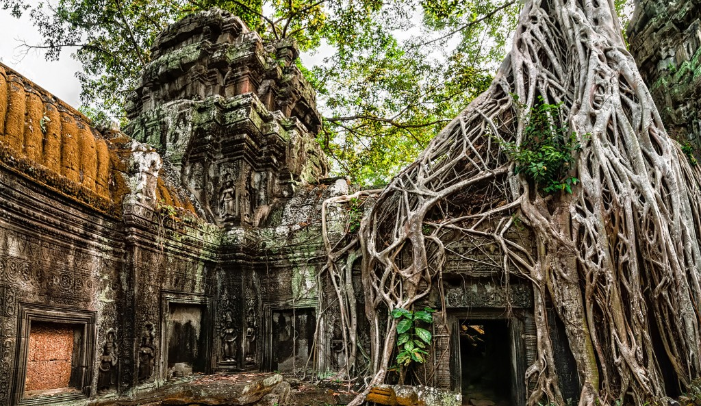 Ta Prohm temple with giant banyan tree at Angkor Wat complex Sie